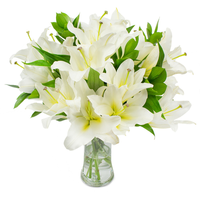 The unique design and fresh fragrant flowers of Striking Beauty bouquet can easily help you bring a smile on the face of the recipient.